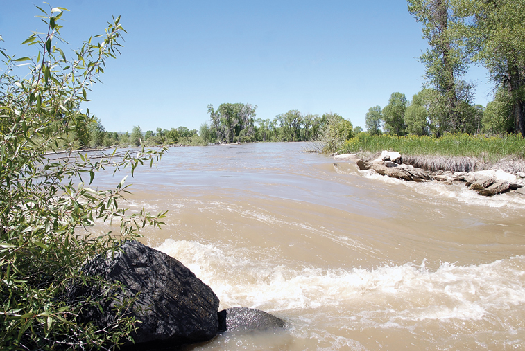 The Yampa River spills into Anna Branch, an irrigation channel east of Craig.