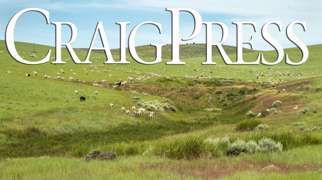 Motorcyclist killed in Highway 40 accident | CraigDailyPress com