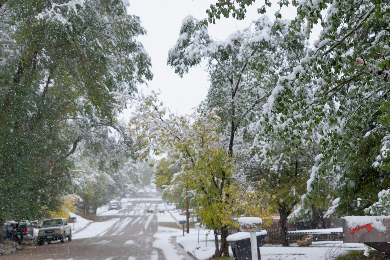 Wet snow Sunday and Monday settles onto streets and trees in neighborhoods across Craig.