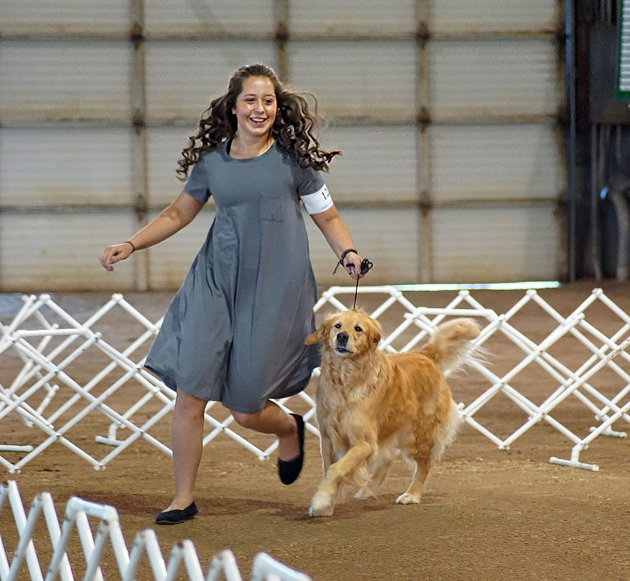 Allison Jacobson and her golden retriever, Bella, trot to show off Bella's gait.