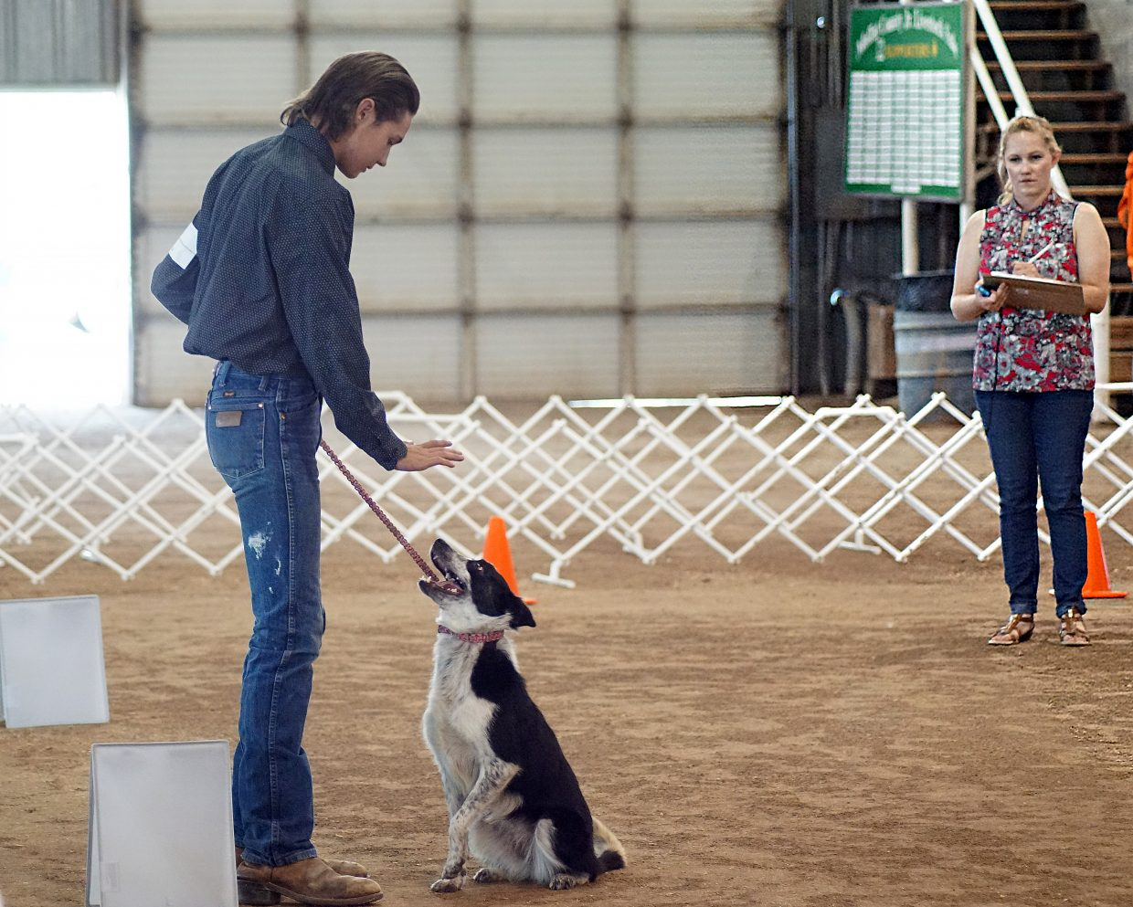 Zena sits when asked and keeps her eyes on handler Brandon Madsen. They pair are inseparable, both inside and outside the show ring.