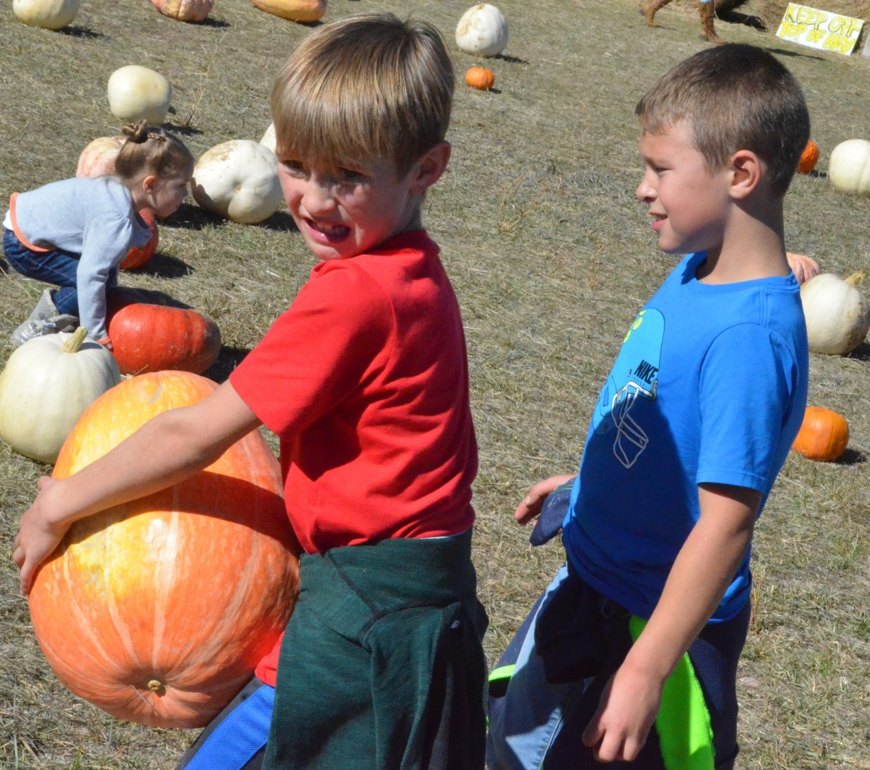 Carson Haskins, 8, hoists a heavy load as he and Noah Weber make their picks at Saturday's pumpkin patch at Wyman Living History Museum.