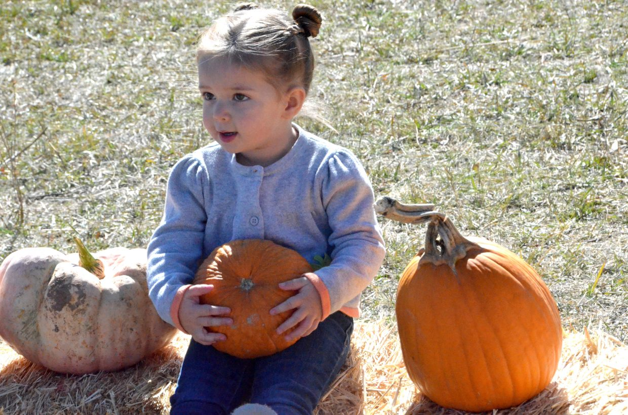 Madison Fallis, 2, has a seat on a hay bale at Saturday's pumpkin patch at Wyman Living History Museum.